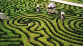 ev_strategies_maze