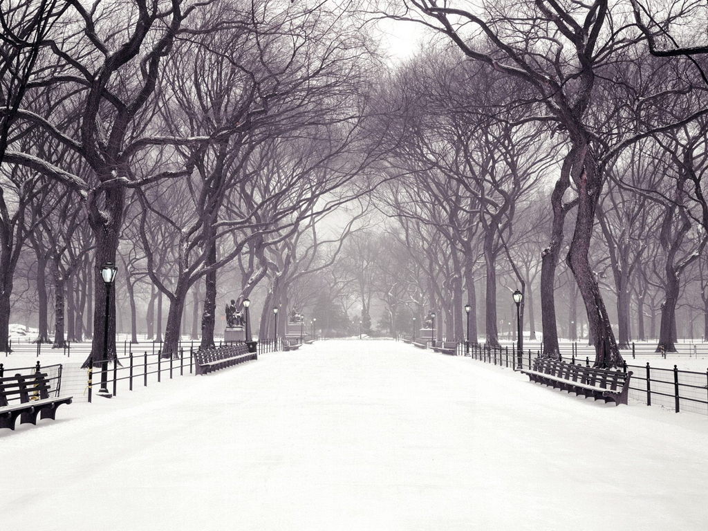 Walk central park new york city new york christmas wallpaper