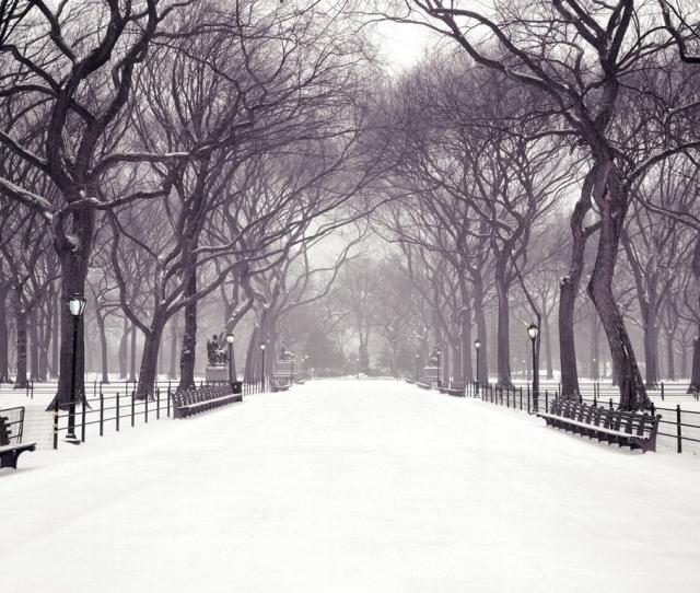 Hecallsmestatuary Walk Central Park New York City New York Christmas Wallpaper