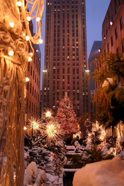 molly marlerrockefeller-center-christmas-tree-scene-photo-new-york-city-manhattan-_srcgpx10001x14487x1bkwvbkwf
